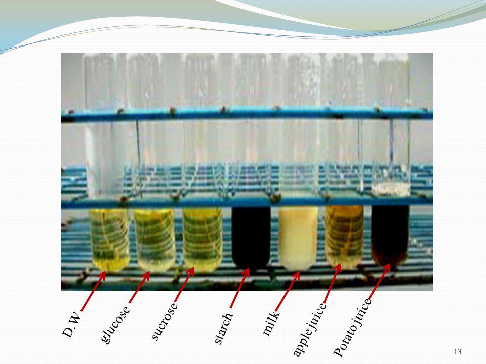 13 D.W glucose sucrose starch milk apple juice Potato juice