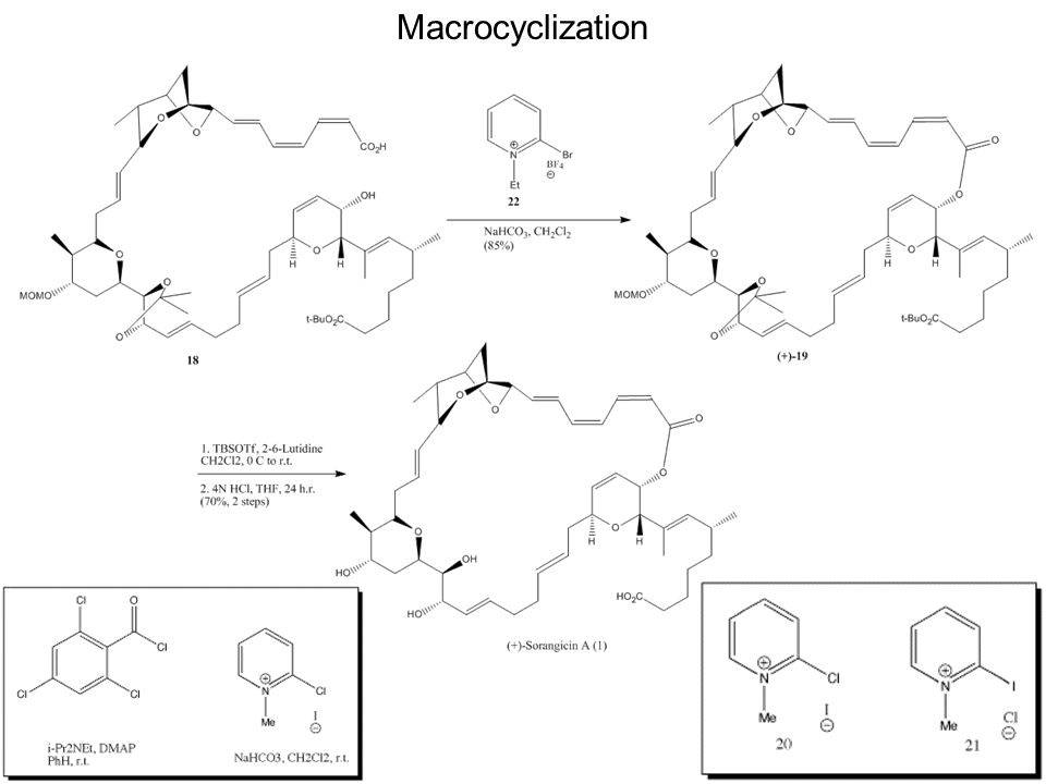 Macrocyclization