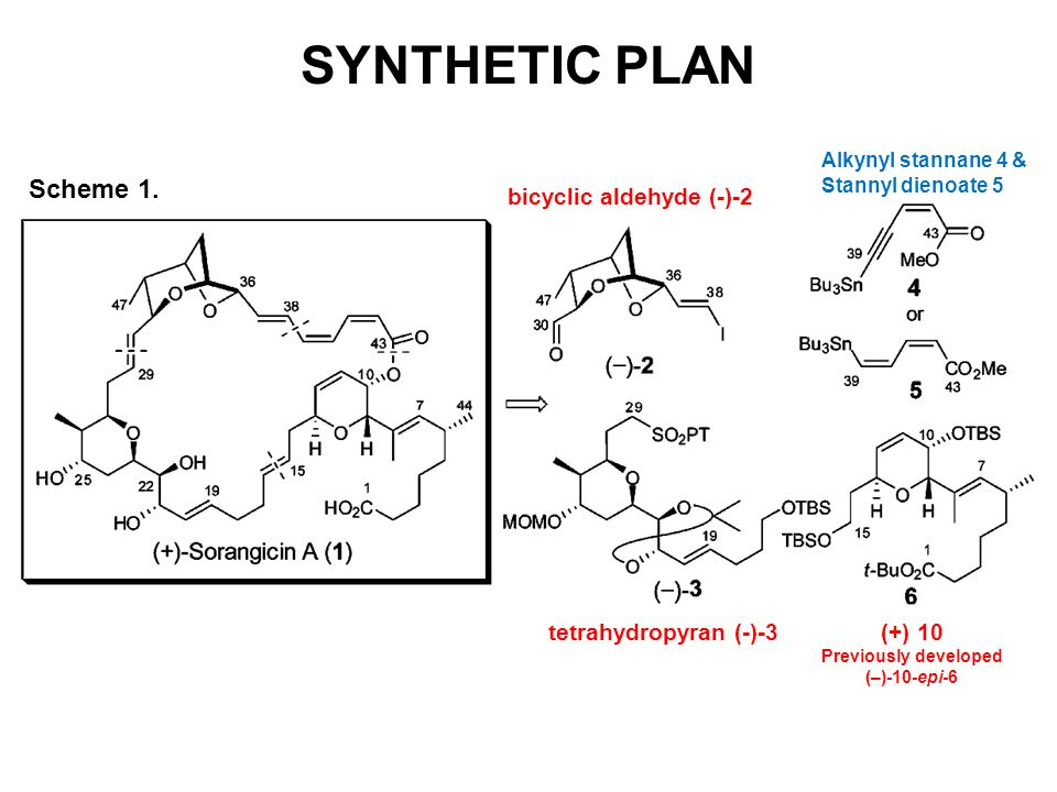 SYNTHETIC PLAN Scheme 1. bicyclic aldehyde (-)-2 tetrahydropyran (-)-3(+) 10 Previously developed (–)-10-epi-6 Alkynyl stannane 4 & Stannyl dienoate 5