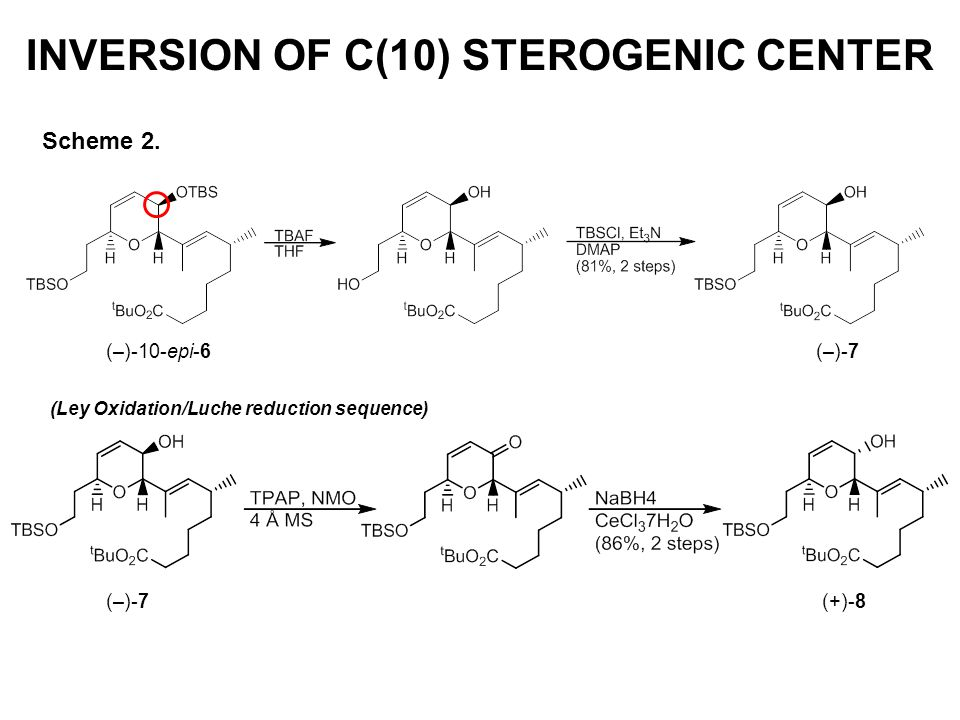 INVERSION OF C(10) STEROGENIC CENTER Scheme 2. (–)-10-epi-6 (–)-7 (Ley Oxidation/Luche reduction sequence) (–)-7 (+)-8