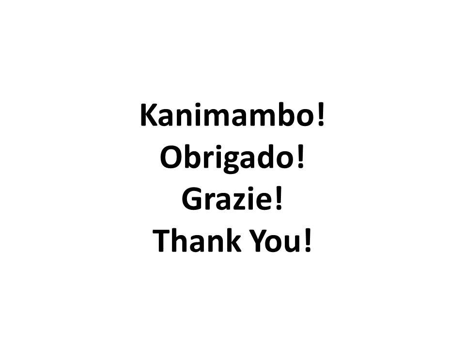 Kanimambo! Obrigado! Grazie! Thank You!