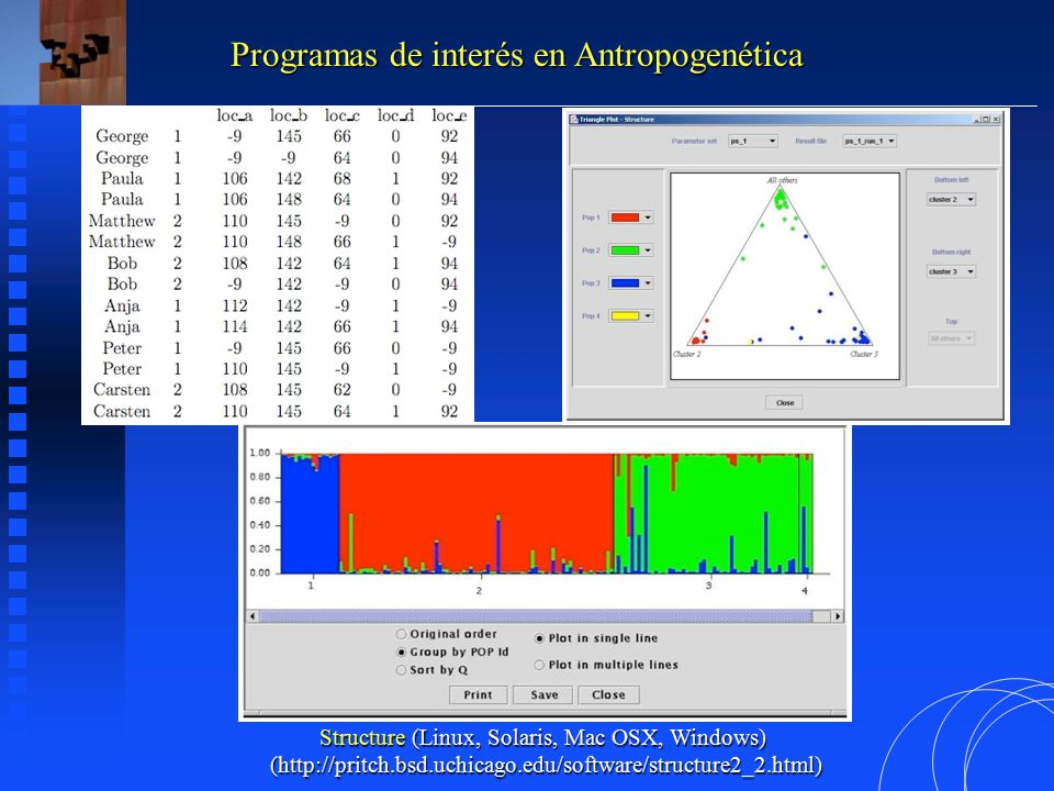 Programas de interés en Antropogenética Structure (Linux, Solaris, Mac OSX, Windows) (http://pritch.bsd.uchicago.edu/software/structure2_2.html)