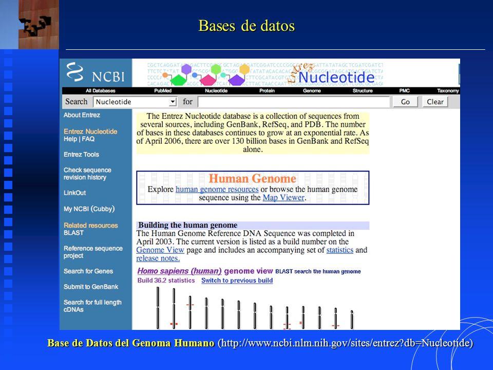 Base de Datos del Genoma Humano (http://www.ncbi.nlm.nih.gov/sites/entrez db=Nucleotide) Bases de datos