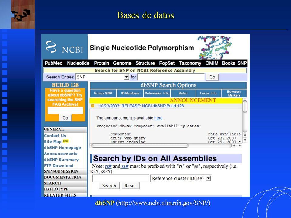 dbSNP (http://www.ncbi.nlm.nih.gov/SNP/) Bases de datos