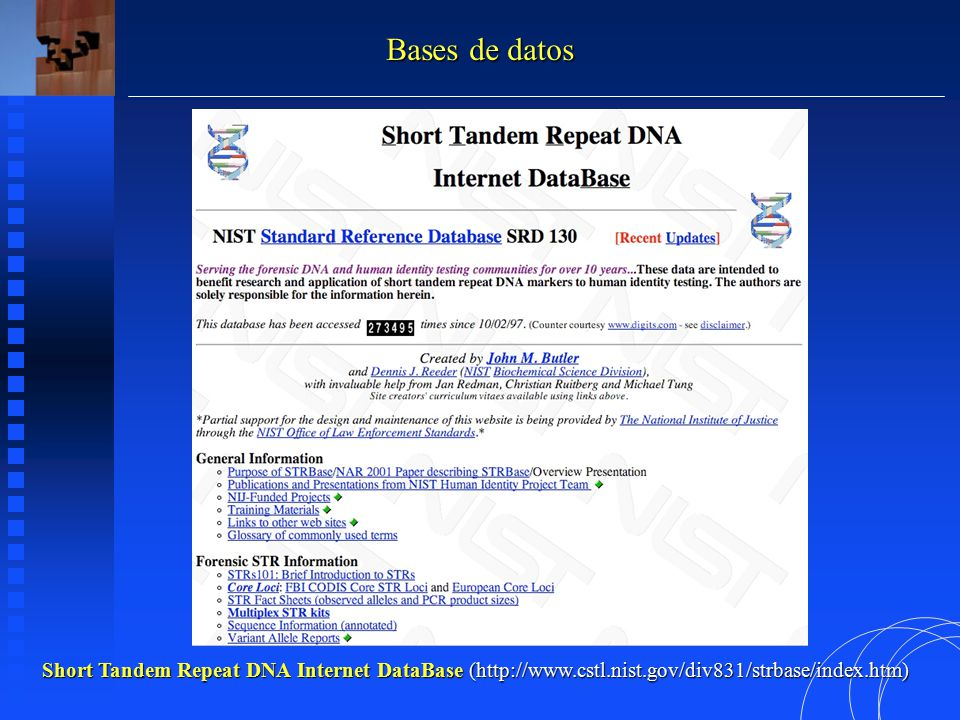 Short Tandem Repeat DNA Internet DataBase (http://www.cstl.nist.gov/div831/strbase/index.htm) Bases de datos