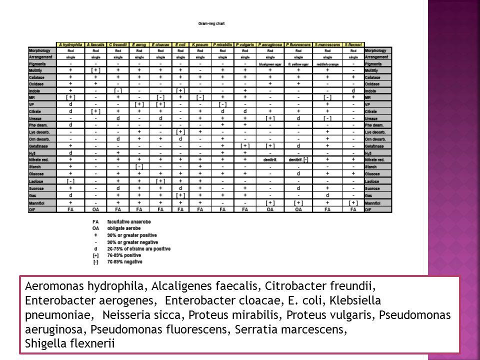 Bacillus cereus, Bacillus megaterium, Bacillus subtilis, Enterococcus faecalis, Lactobacillus lactis, Micrococcus luteus, Micrococcus roseus, Mycobacterium phlei, Sporosarcina ureae, Staph aureus, Staph epidermidis, Strep pyogenes, Strep salivarius