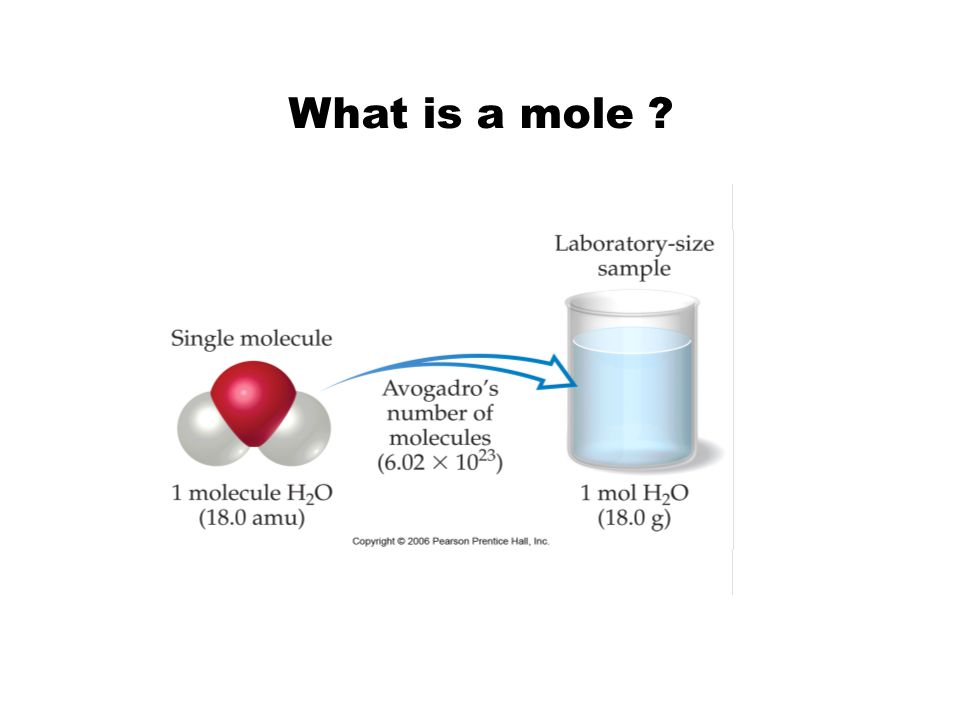 What is a mole ?