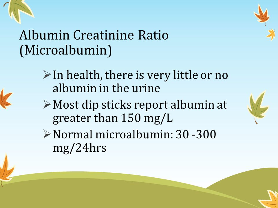 Albumin Creatinine Ratio (Microalbumin)  In health, there is very little or no albumin in the urine  Most dip sticks report albumin at greater than