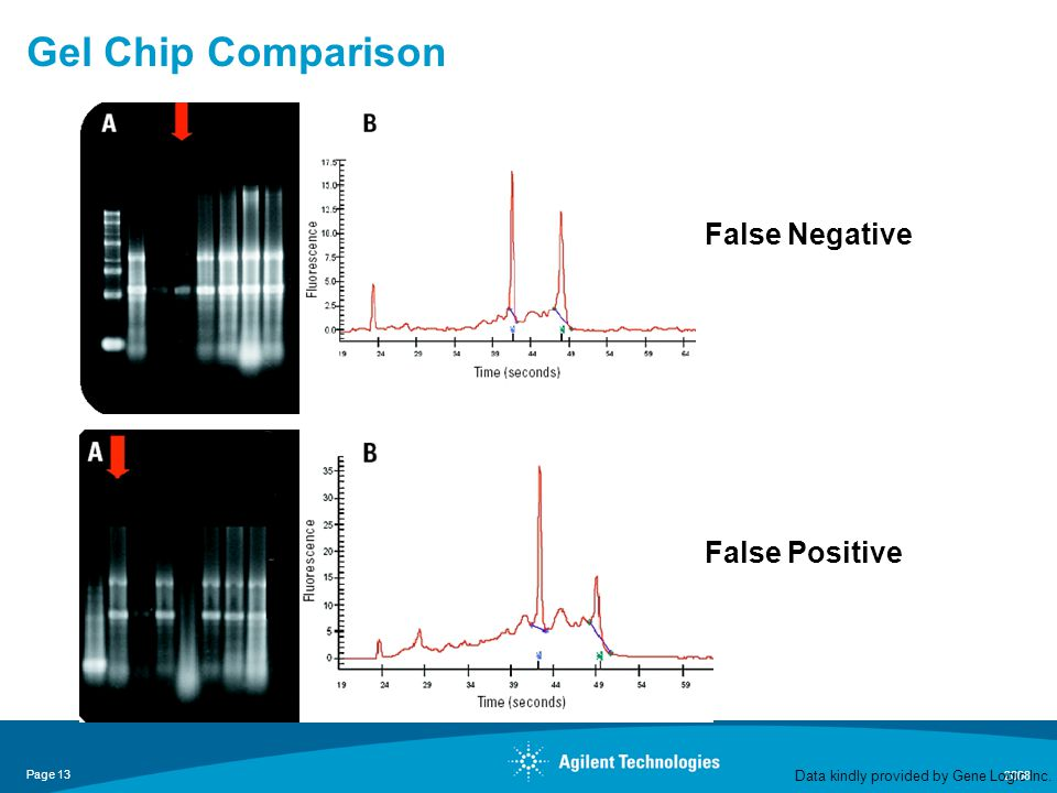 Page 13 2008 Gel Chip Comparison False Negative Data kindly provided by Gene Logic Inc.