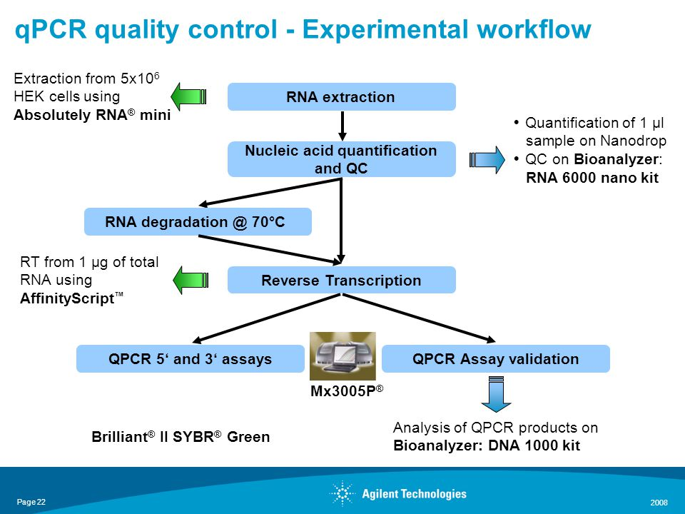 Page 22 2008 qPCR quality control - Experimental workflow RNA extraction Nucleic acid quantification and QC Reverse Transcription QPCR Assay validationQPCR 5' and 3' assays Extraction from 5x10 6 HEK cells using Absolutely RNA ® mini RT from 1 µg of total RNA using AffinityScript ™  Quantification of 1 µl sample on Nanodrop  QC on Bioanalyzer: RNA 6000 nano kit Analysis of QPCR products on Bioanalyzer: DNA 1000 kit RNA degradation @ 70°C Mx3005P ® Brilliant ® II SYBR ® Green