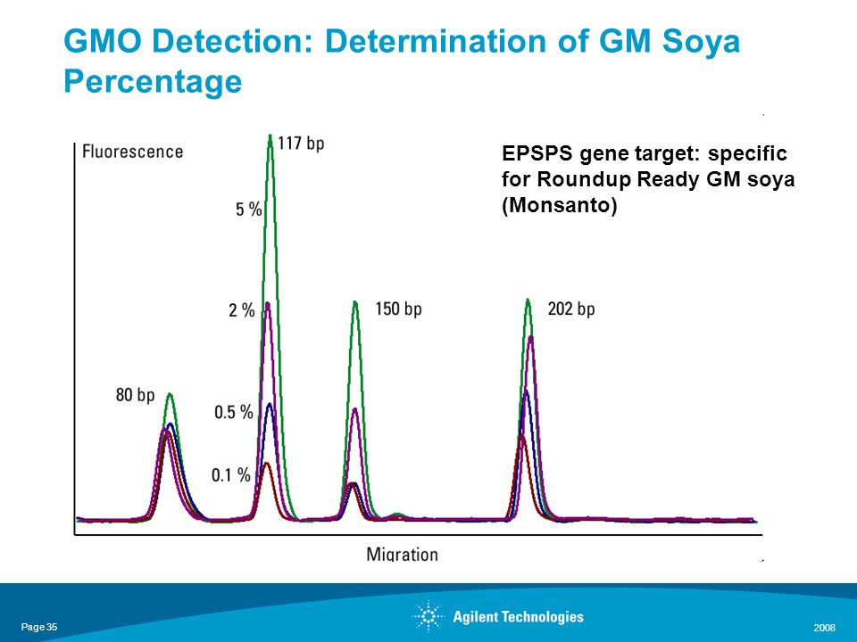 Page 35 2008 GMO Detection: Determination of GM Soya Percentage Data kindly provided by CCFRA Soya lectin gene target EPSPS gene target: specific for Roundup Ready GM soya (Monsanto)
