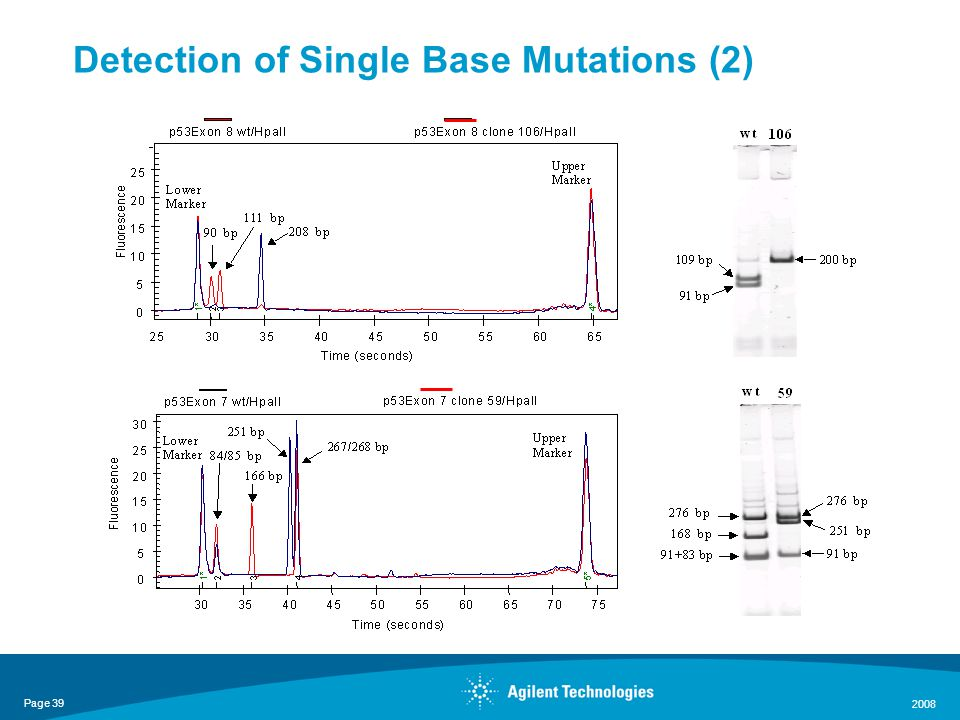 Page 39 2008 Detection of Single Base Mutations (2)