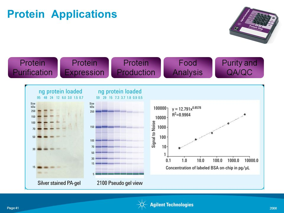 Page 41 2008 Protein Applications Protein Purification Protein Production Protein Expression Food Analysis Purity and QA/QC