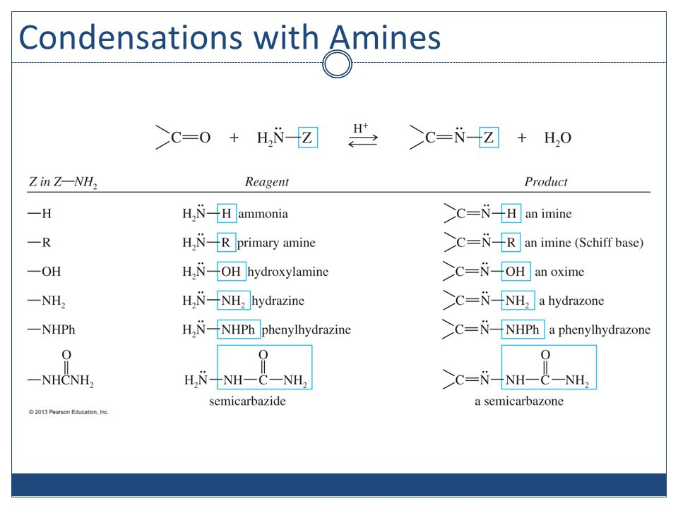 Condensations with Amines