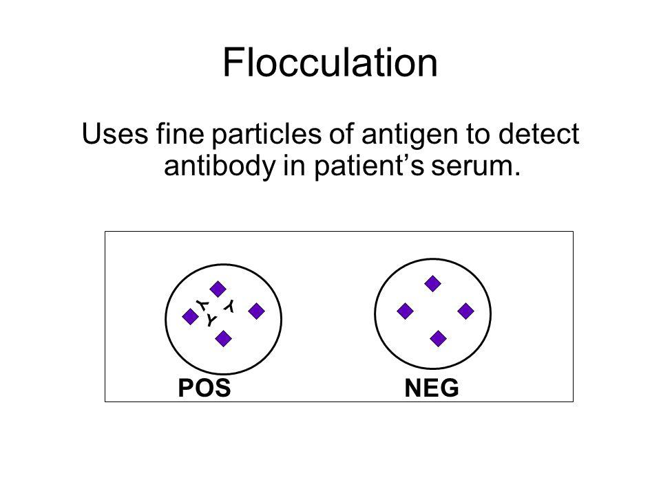 Flocculation Uses fine particles of antigen to detect antibody in patient's serum. Y Y Y POS NEG