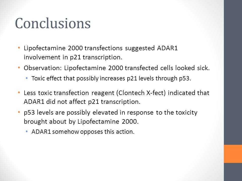 Conclusions Lipofectamine 2000 transfections suggested ADAR1 involvement in p21 transcription.