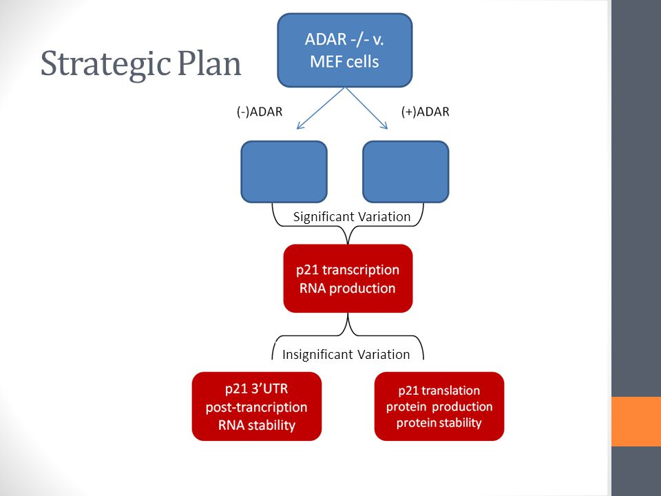 Strategic Plan Significant Variation Insignificant Variation