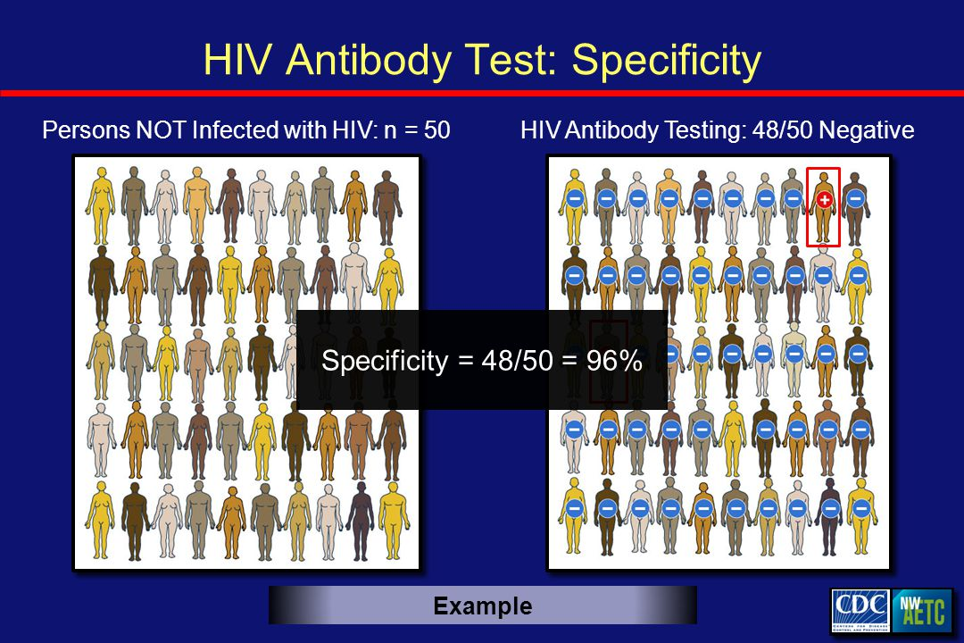 HIV Antibody Test: Specificity HIV Antibody Testing: 48/50 NegativePersons NOT Infected with HIV: n = 50 Specificity = 48/50 = 96% Example