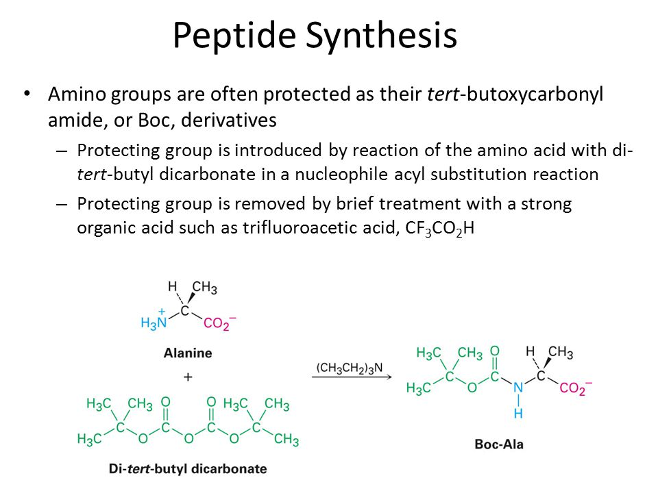 Amino groups are often protected as their tert-butoxycarbonyl amide, or Boc, derivatives – Protecting group is introduced by reaction of the amino acid with di- tert-butyl dicarbonate in a nucleophile acyl substitution reaction – Protecting group is removed by brief treatment with a strong organic acid such as trifluoroacetic acid, CF 3 CO 2 H Peptide Synthesis