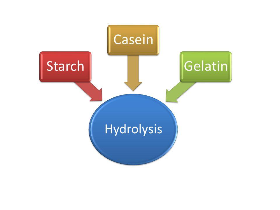 Hydrolysis StarchCaseinGelatin