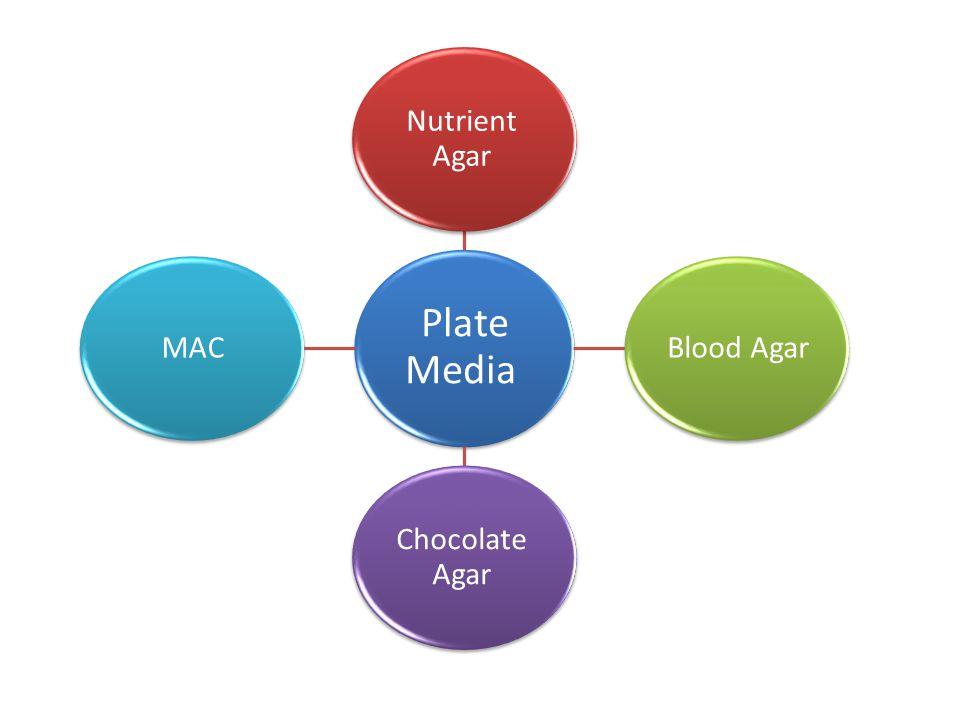 Plate Media Nutrient Agar Blood Agar Chocolate Agar MAC