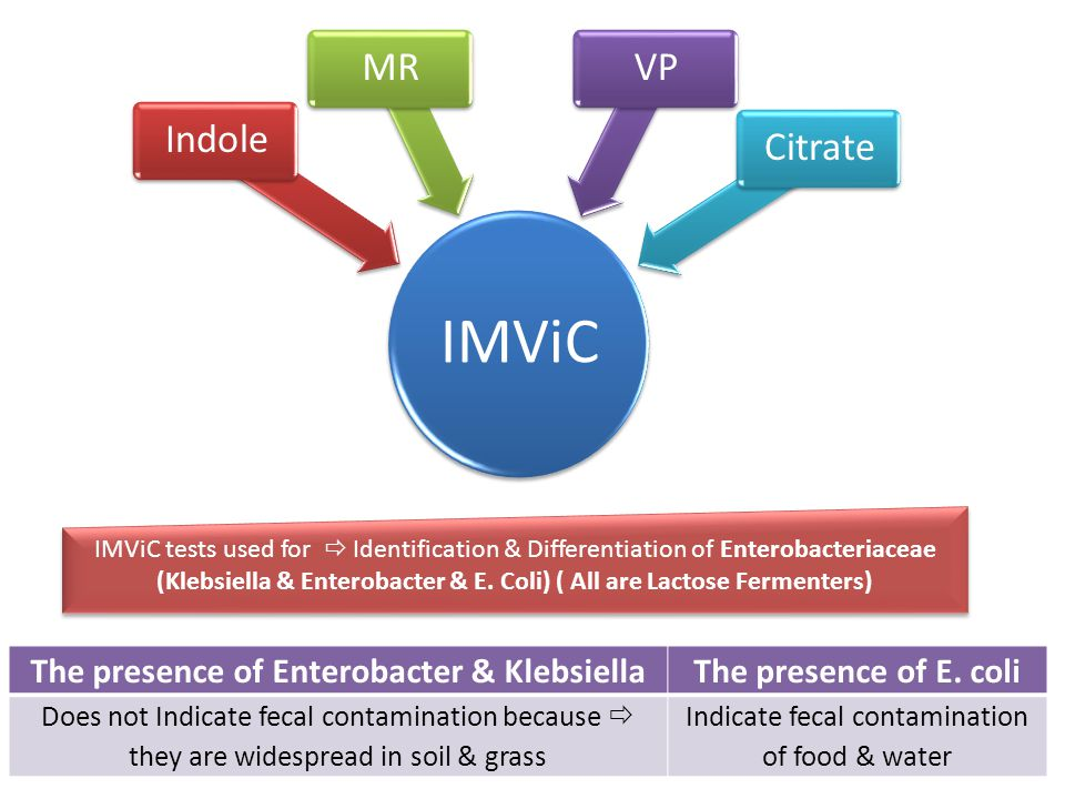 IMViC IndoleMRVPCitrate IMViC tests used for  Identification & Differentiation of Enterobacteriaceae (Klebsiella & Enterobacter & E.