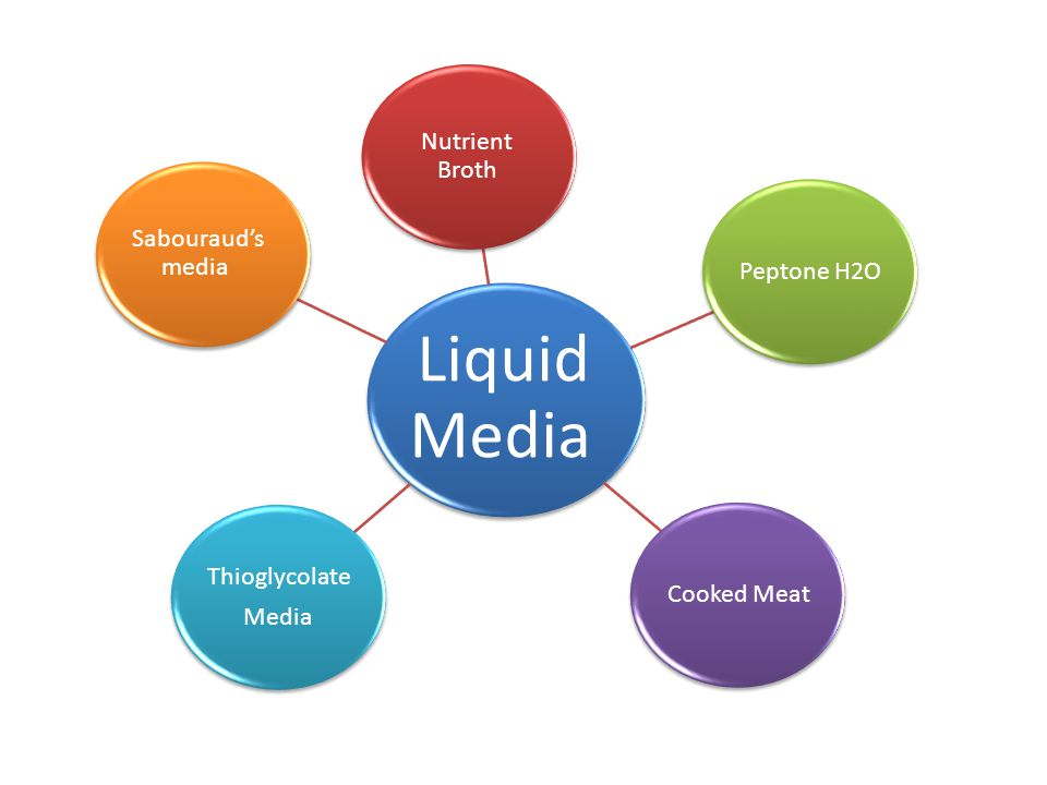 Liquid Media Nutrient Broth Peptone H2OCooked Meat Thioglycolate Media Sabouraud's media