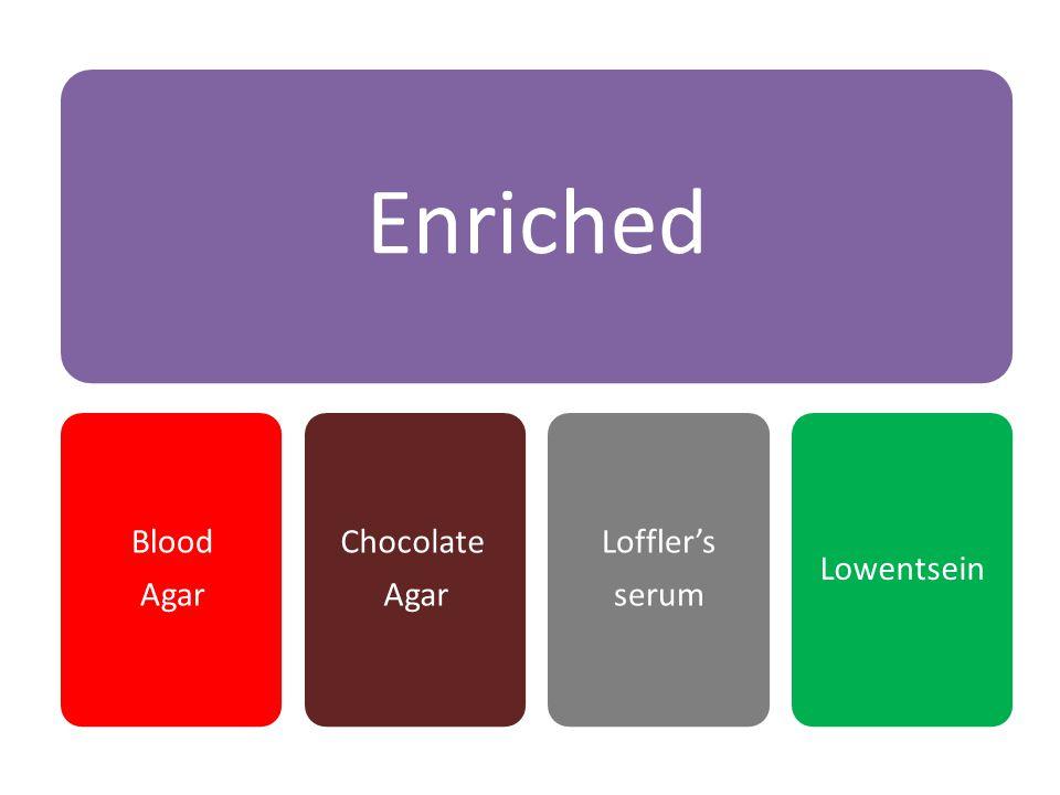 Enriched Blood Agar Chocolate Agar Loffler's serum Lowentsein