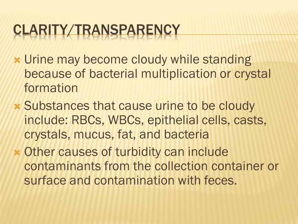  Urine may become cloudy while standing because of bacterial multiplication or crystal formation  Substances that cause urine to be cloudy include: