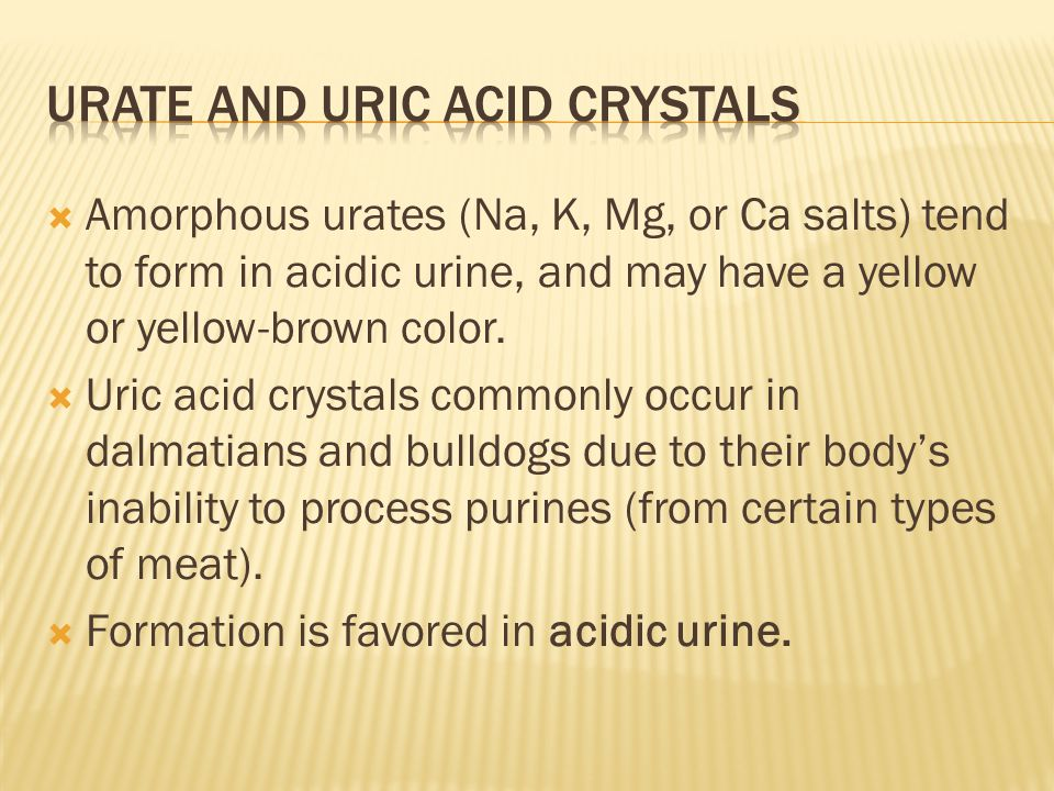  Amorphous urates (Na, K, Mg, or Ca salts) tend to form in acidic urine, and may have a yellow or yellow-brown color.  Uric acid crystals commonly o