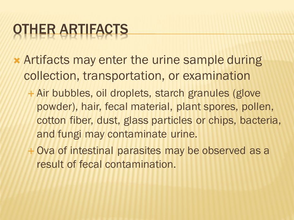  Artifacts may enter the urine sample during collection, transportation, or examination  Air bubbles, oil droplets, starch granules (glove powder),