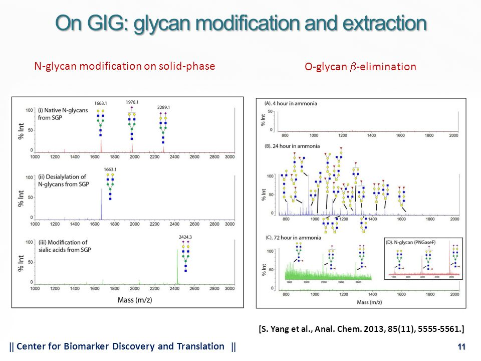 11  Center for Biomarker Discovery and Translation  11 On GIG: glycan modification and extraction N-glycan modification on solid-phase O-glycan  -elimination [S.