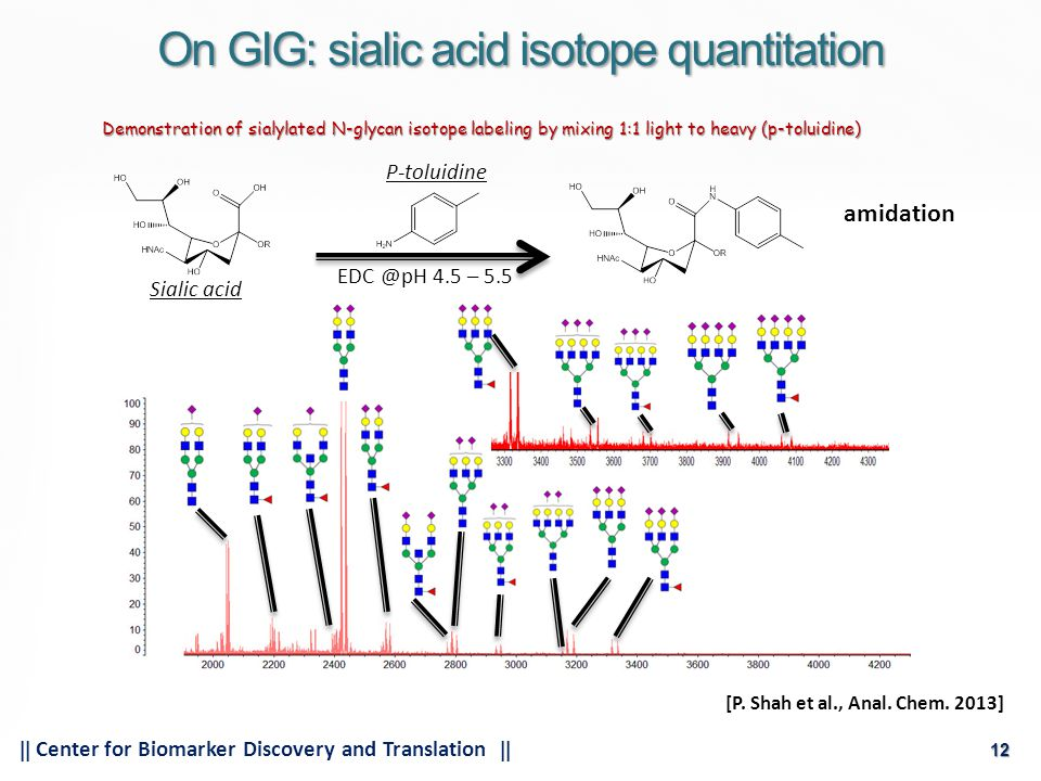 12  Center for Biomarker Discovery and Translation  12 On GIG: sialic acid isotope quantitation Demonstration of sialylated N-glycan isotope labeling by mixing 1:1 light to heavy (p-toluidine) EDC @pH 4.5 – 5.5 Sialic acid P-toluidine [P.