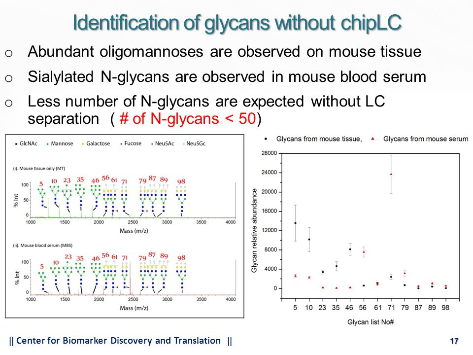 17  Center for Biomarker Discovery and Translation  17 o Abundant oligomannoses are observed on mouse tissue o Sialylated N-glycans are observed in mouse blood serum o Less number of N-glycans are expected without LC separation ( # of N-glycans < 50) Identification of glycans without chipLC