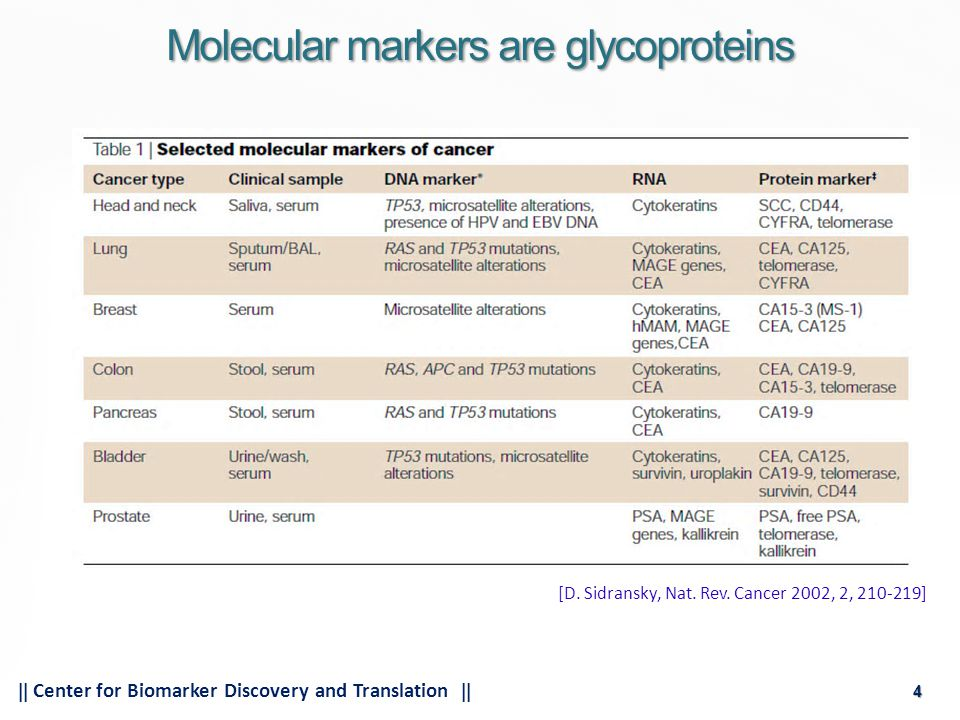 4  Center for Biomarker Discovery and Translation  4 Molecular markers are glycoproteins [D.