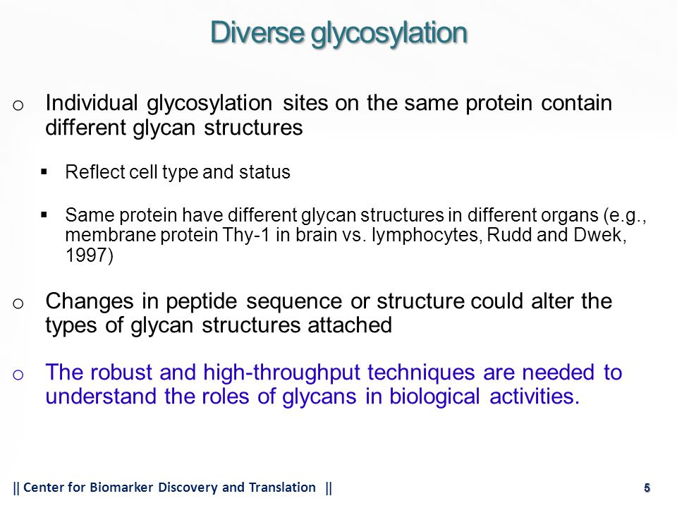 5  Center for Biomarker Discovery and Translation  5 o Individual glycosylation sites on the same protein contain different glycan structures  Reflect cell type and status  Same protein have different glycan structures in different organs (e.g., membrane protein Thy-1 in brain vs.