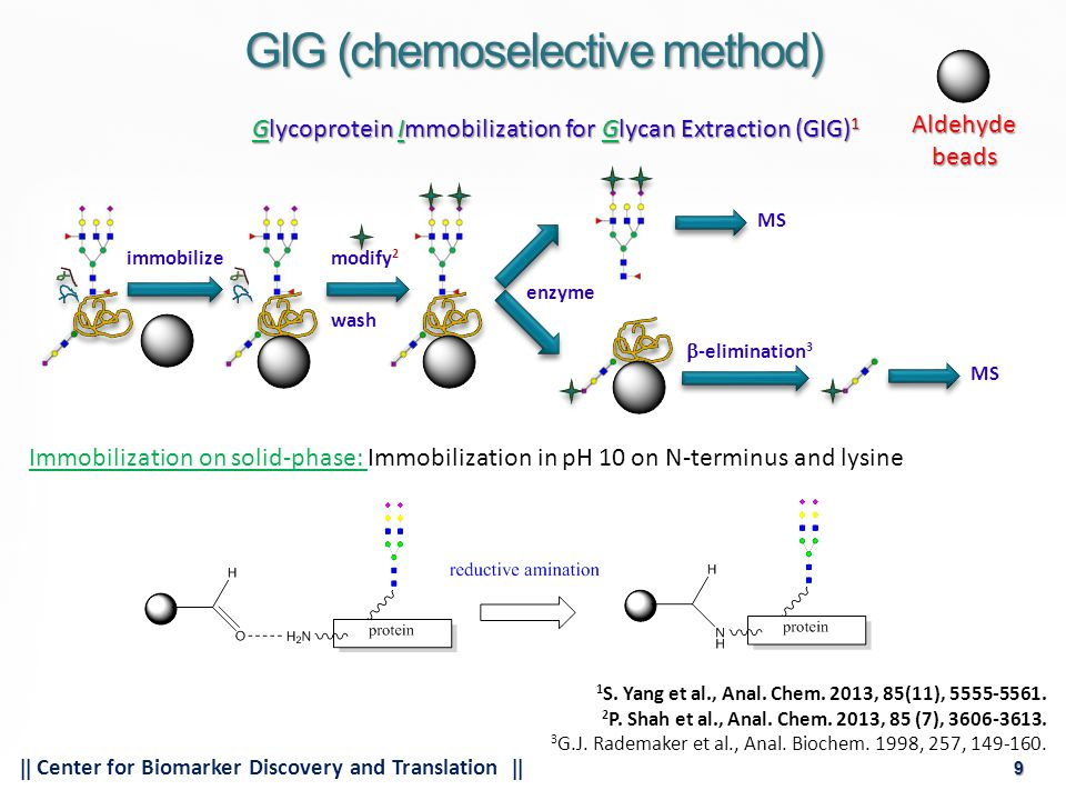 9  Center for Biomarker Discovery and Translation  9 GIG (chemoselective method) Glycoprotein Immobilization for Glycan Extraction (GIG) 1 Immobilization on solid-phase: Immobilization in pH 10 on N-terminus and lysine 1 S.