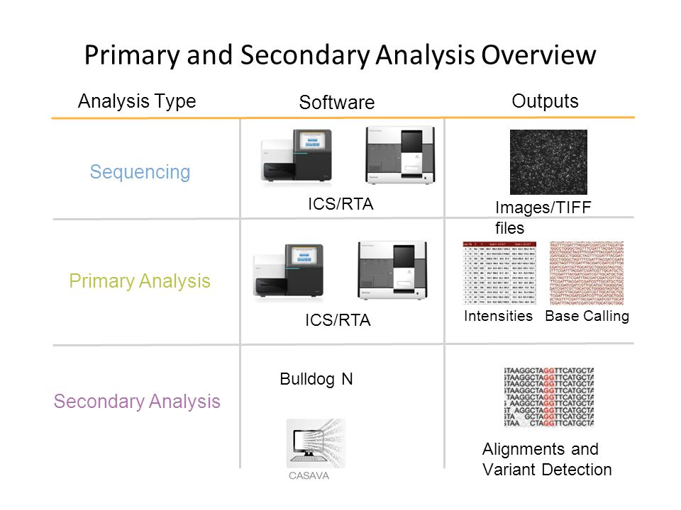 Alignments and Variant Detection Images/TIFF files Base CallingIntensities Software Outputs Primary and Secondary Analysis Overview Analysis Type Prim
