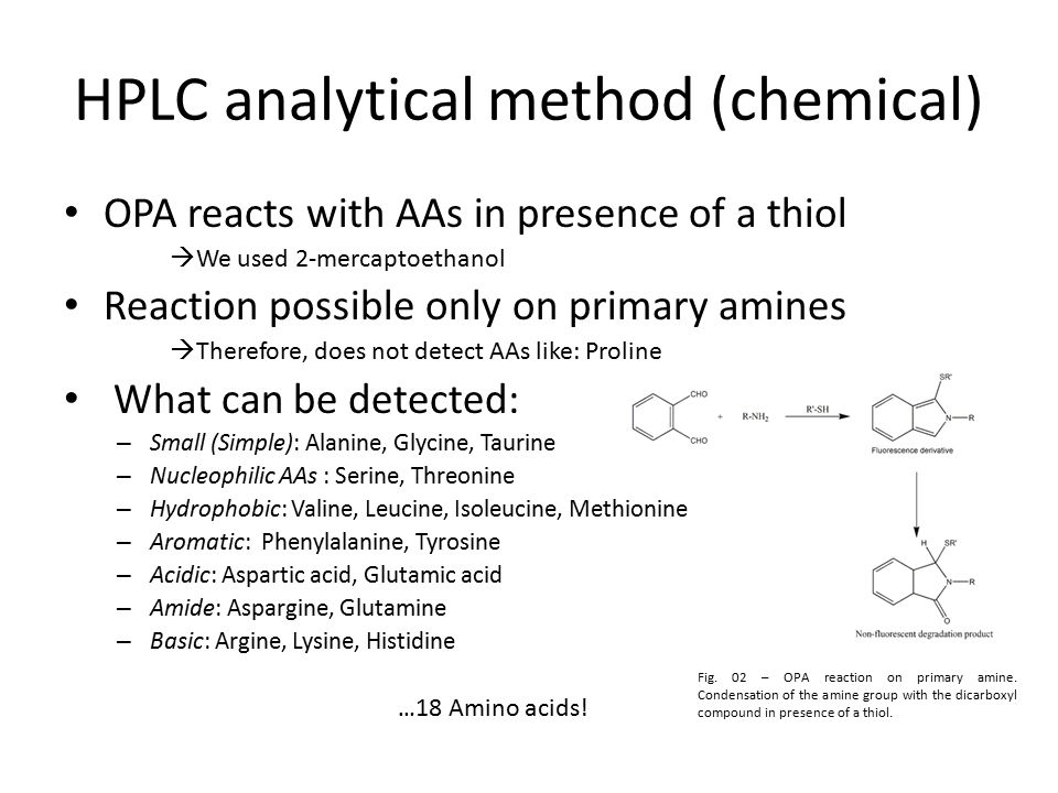 HPLC analytical method (chemical) OPA reacts with AAs in presence of a thiol  We used 2-mercaptoethanol Reaction possible only on primary amines  Therefore, does not detect AAs like: Proline What can be detected: – Small (Simple): Alanine, Glycine, Taurine – Nucleophilic AAs : Serine, Threonine – Hydrophobic: Valine, Leucine, Isoleucine, Methionine – Aromatic: Phenylalanine, Tyrosine – Acidic: Aspartic acid, Glutamic acid – Amide: Aspargine, Glutamine – Basic: Argine, Lysine, Histidine … 18 Amino acids.