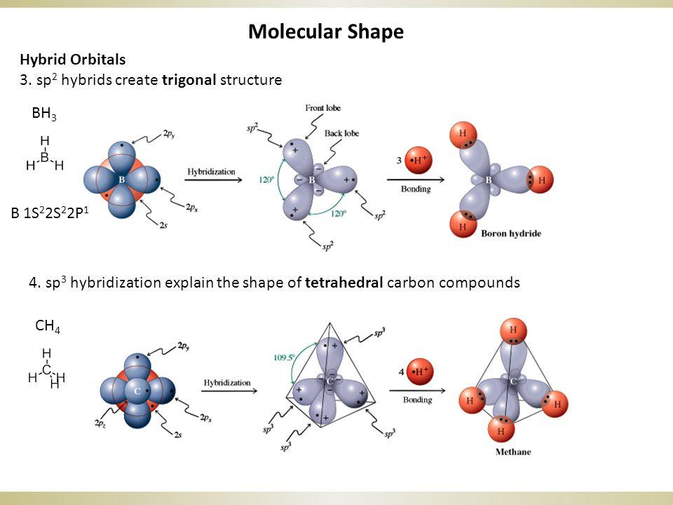 Molecular Shape Hybrid Orbitals 3. sp 2 hybrids create trigonal structure BH 3 4. sp 3 hybridization explain the shape of tetrahedral carbon compounds