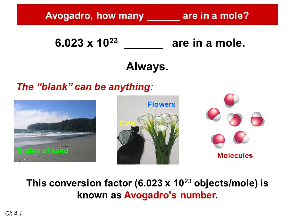 Avogadro, how many ______ are in a mole. 6.023 x 10 23 ______ are in a mole.