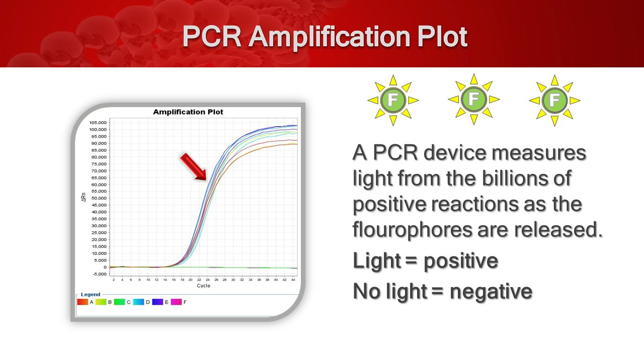 A PCR device measures light from the billions of positive reactions as the flourophores are released.