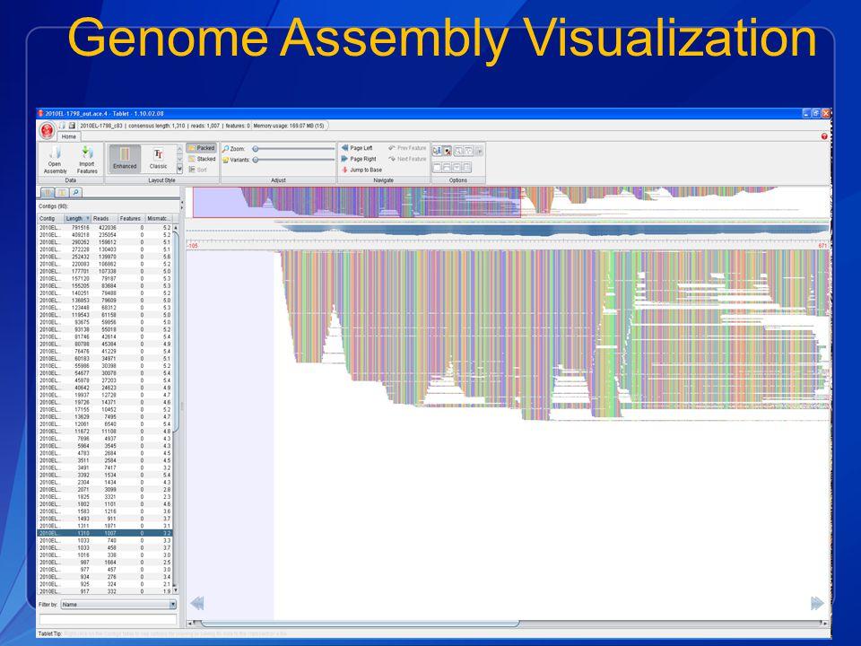 Genome Assembly Visualization