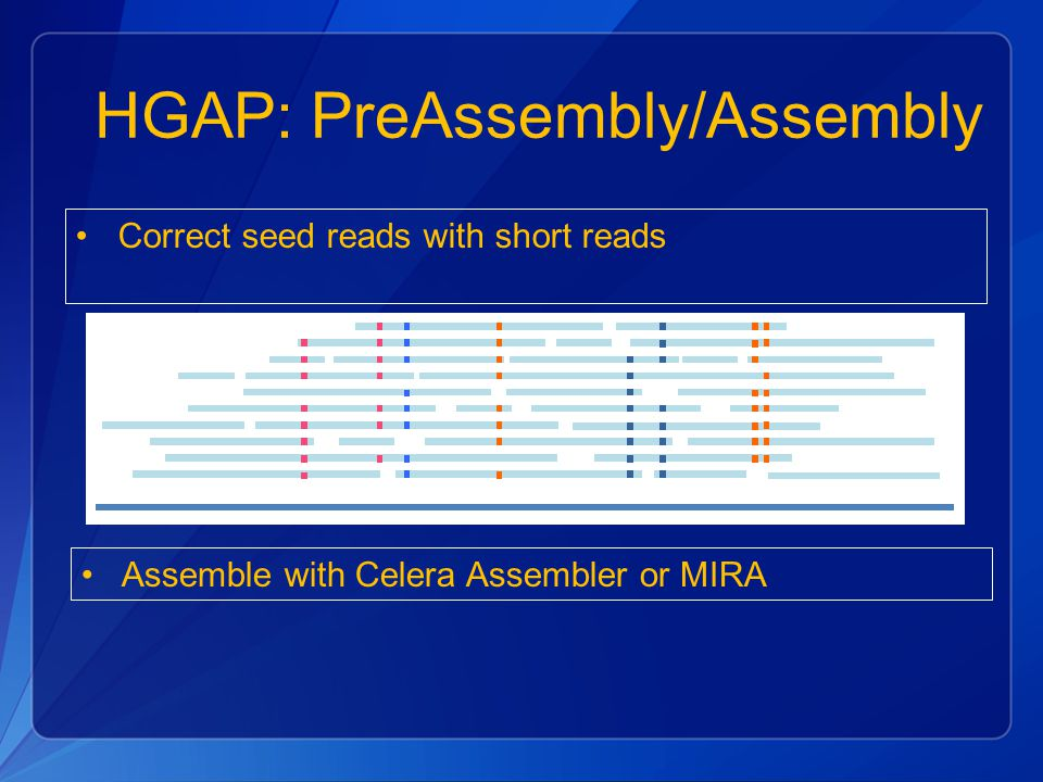 HGAP: PreAssembly/Assembly Correct seed reads with short reads Assemble with Celera Assembler or MIRA