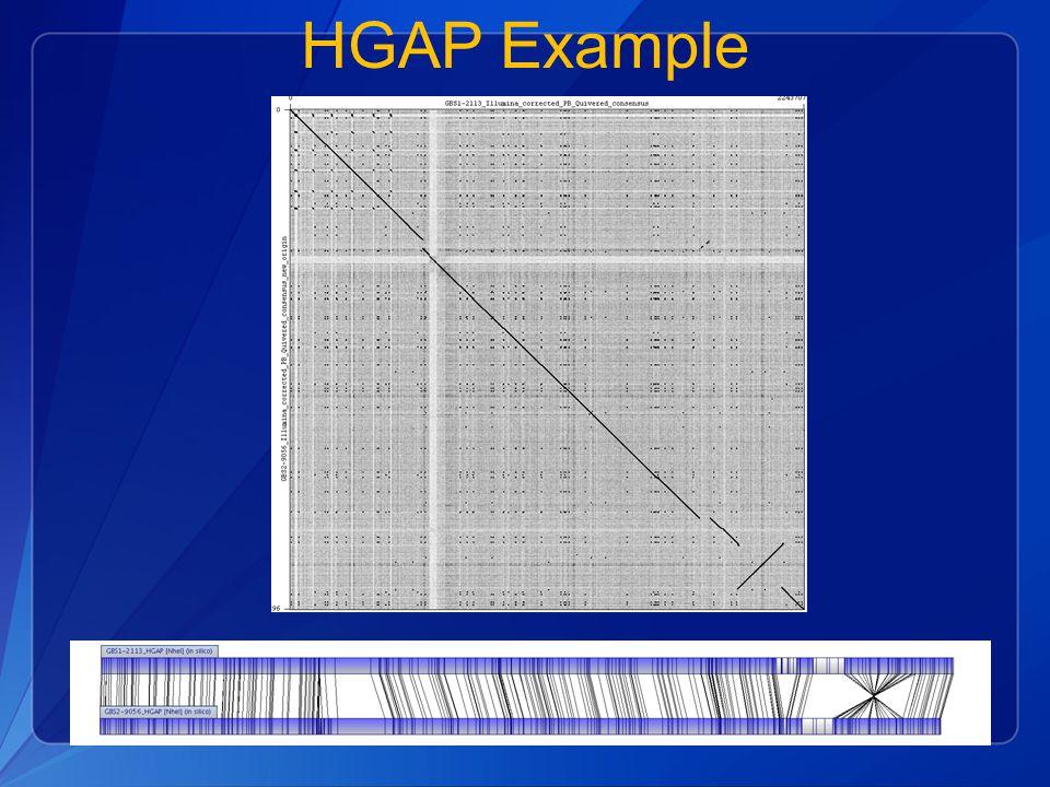 HGAP Example