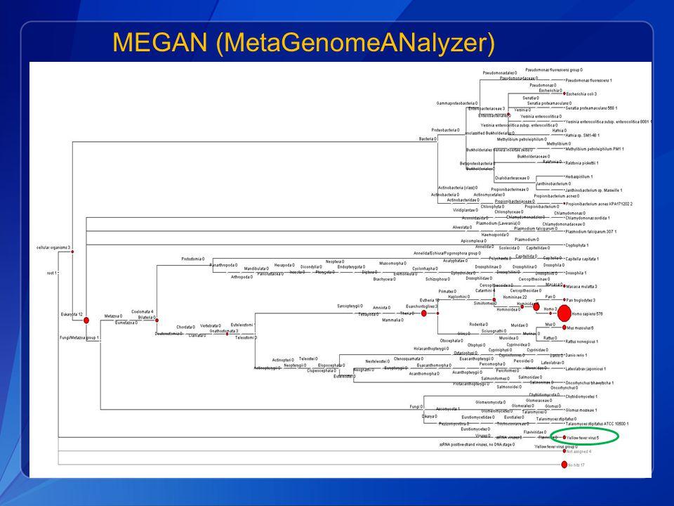 MEGAN (MetaGenomeANalyzer)