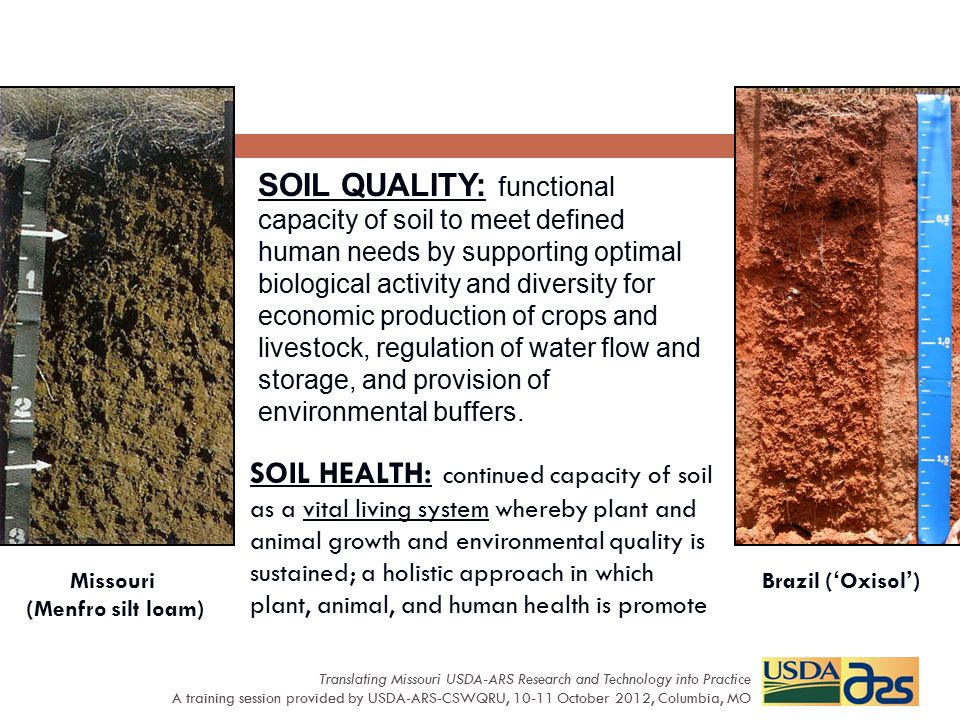 SOIL QUALITY: functional capacity of soil to meet defined human needs by supporting optimal biological activity and diversity for economic production