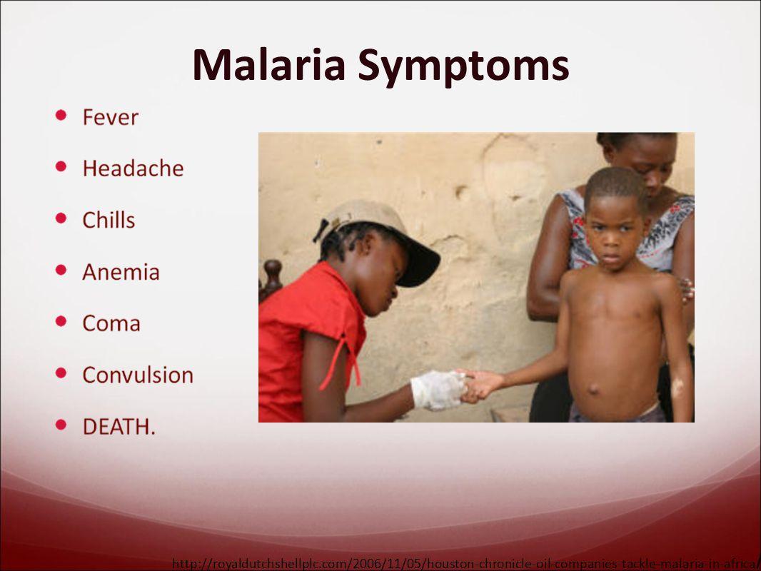 Malaria Symptoms http://royaldutchshellplc.com/2006/11/05/houston-chronicle-oil-companies-tackle-malaria-in-africa /