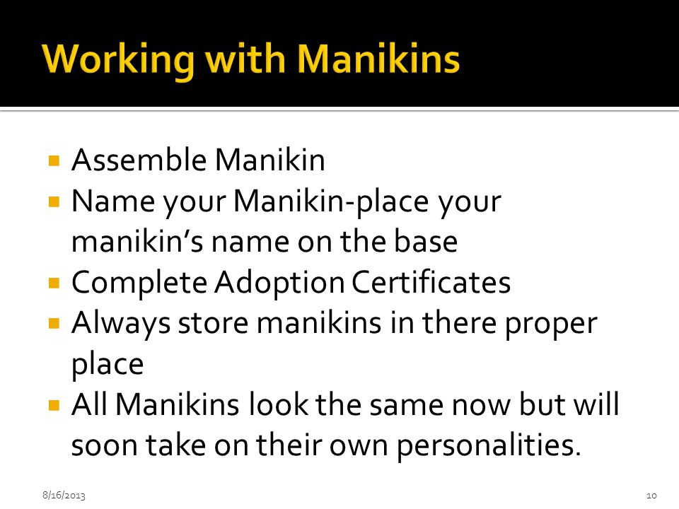  Assemble Manikin  Name your Manikin-place your manikin's name on the base  Complete Adoption Certificates  Always store manikins in there proper