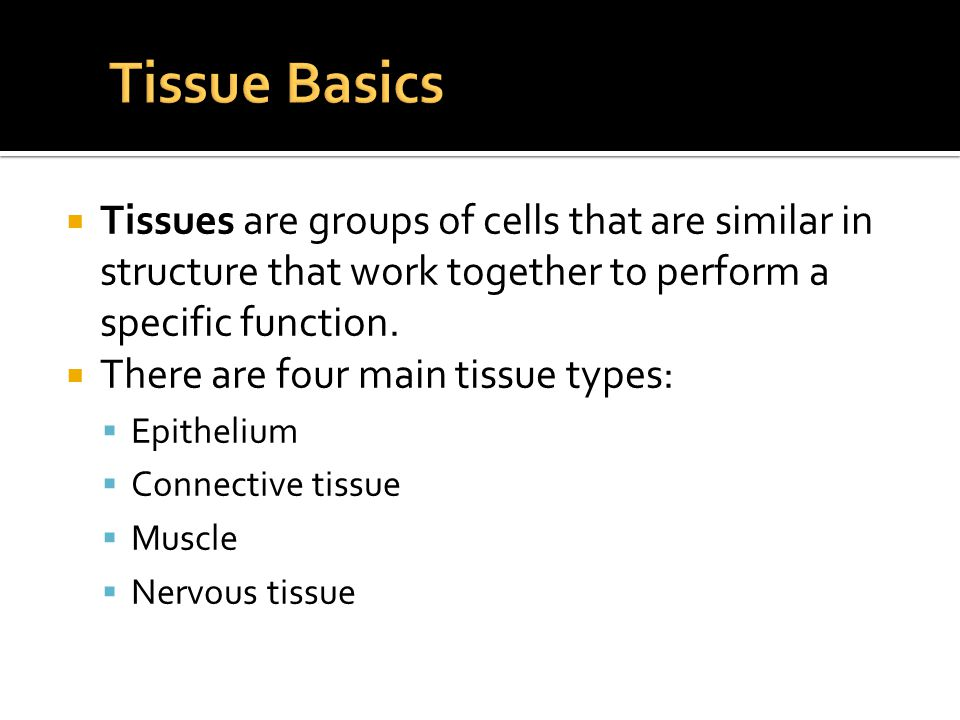  Tissues are groups of cells that are similar in structure that work together to perform a specific function.  There are four main tissue types:  E